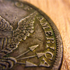 Old Coin Macro by Michael Fenton - Artistic Objects Antiques ( arrows, macro, old, eagle, america, macro photography, coin, photography, currency )