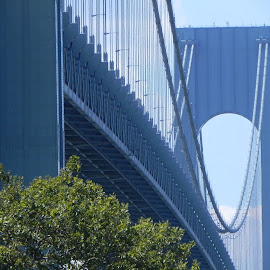 Verrazano Bridge by Kathryn Nagelberg - Buildings & Architecture Bridges & Suspended Structures