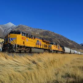 Train 12 15 14 by John Dodson - Transportation Trains ( utah, locomotive, union pacific, ogden utah, trains )
