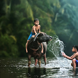 Bathing  Buffalo by Ipoenk Graphic - Babies & Children Children Candids