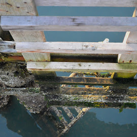 Watch Your Step by Rob Kovacs - Novices Only Objects & Still Life ( ladder, water, reflection, barnacles, wood, rope )