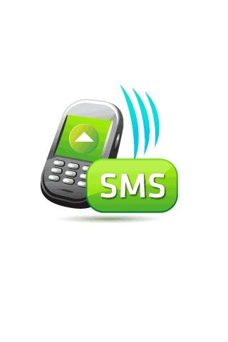 SMS Auto Reply