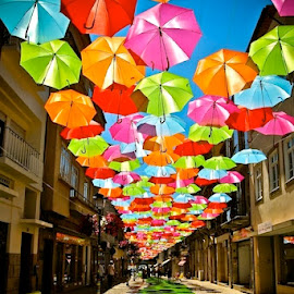 Umbrella walkway in Portugal by Tyrell Heaton - City,  Street & Park  Street Scenes ( umbrella, streets, portugal )
