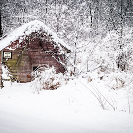 Absolutely Winter by James Banks - Buildings & Architecture Other Exteriors ( illinois, winter )