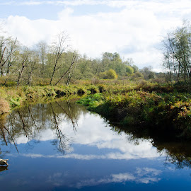 Still Creek by Cory Bohnenkamp - Landscapes Prairies, Meadows & Fields ( clouds, nature, creek, meadow, still creek, natural, river )