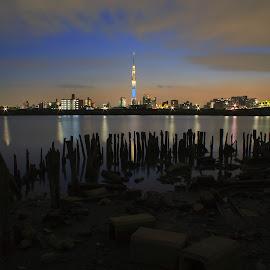ara river side by Kadek Lana - City,  Street & Park  Neighborhoods ( japan, skytree, tokyo, night, landscape )