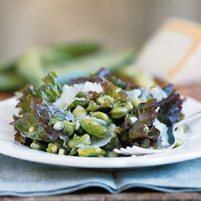 Fava Bean and Pecorino Salad