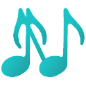 Network Audio Player icon