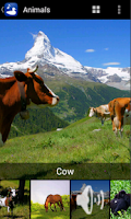 Screenshot of Animal Images Sounds AD-FREE