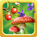 Forest Plants encyclopedia 1.0.14051415 Apk