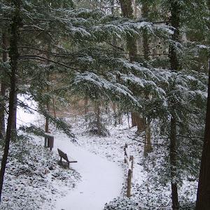 Snowy MCP 028.JPG