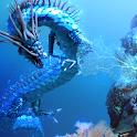 Sea Dragon Trace Free icon