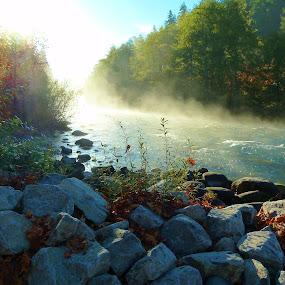 Oregon Morning by Samantha Linn - Novices Only Landscapes ( nature, sunrise, rivers,  )