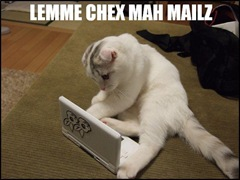 let me check my emails lolcat