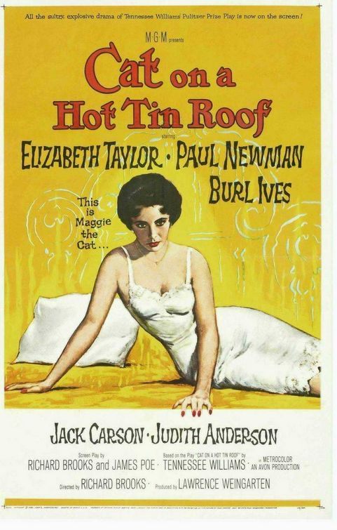 cat_on_a_hot_tin_roof.jpg