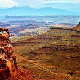 Desert Valley by Tim Hall - Landscapes Forests ( utah, canyonlands, desert southwest, off road, canyon, national parks, red rocks, travel, hiking, hike )