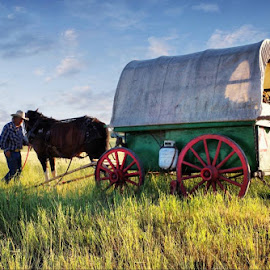 Ready The Wagons. One of my favorite shots of Monty & Leo. by Dave Bower - Transportation Other