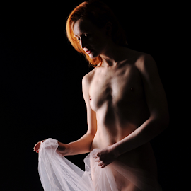 Cover up by Vineet Johri - Nudes & Boudoir Artistic Nude ( photography workshop london, vkumar, anita de bauch, art nude, fabric, art nude lighitng )