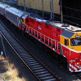 V-line heading to Melbourne by Ned Kelly - Transportation Trains ( passenger, diesel, railway, train, transportation )