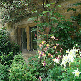 Cotswold cottage  by Ian Turnell - Buildings & Architecture Homes ( cute cottage, quaint cottage, cottage, wall flowers, flowers )