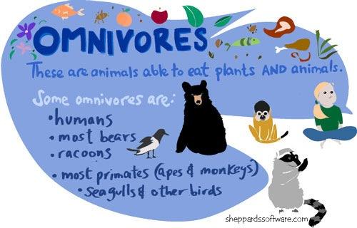 omnivore3