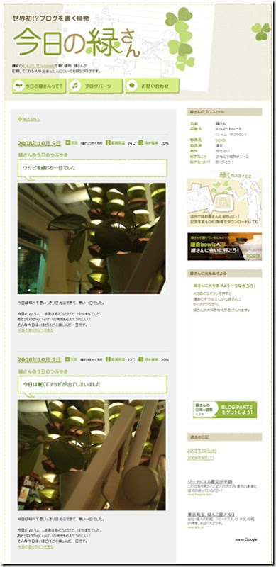 blogging_plant