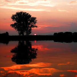 Sunset.. by Željko Salai - Instagram & Mobile Other