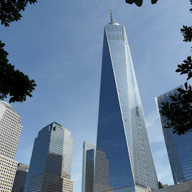Freedom Tower by Darren Harrison - Buildings & Architecture Office Buildings & Hotels ( skyline, world trade center, new york city, nyc, freedom tower )
