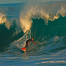 The Wedge by Jeannine Jones - Sports & Fitness Surfing