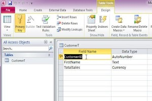 Screenshot of 599CD Teaches Microsoft Access