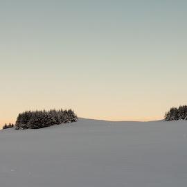 Winter wonderland by Fjola Thorvaldsdottir - Landscapes Prairies, Meadows & Fields ( europe, náttúra, 50d, fjóla dögg, vetur, canon 50d, tré, evrópa, fjola dogg, iceland, winter, nature, no people, trees, ísland )