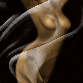 Sin by Carmen Velcic - Digital Art People ( abstract, body, girl, nude, woman, she, lady, veil, digital )