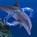 Dolphin Ring icon