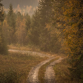 by Peter Engman - Landscapes Travel