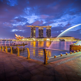 singapore MBS  by Jun Hao - City,  Street & Park  City Parks ( landscape 2015,  )