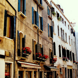 Italy by Tina Zingo - Buildings & Architecture Other Exteriors (  )
