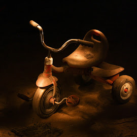 by Condie Friddle - Abstract Light Painting ( tricycle, flashlight, florida, golden, outside,  )