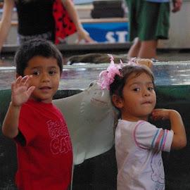 Stingray Photobomb by Jason Gaston - Babies & Children Children Candids ( photobomb, female, male, children, hispanic, stingray,  )