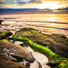 Undertow by Gary Kasl - Landscapes Beaches ( water, clouds, san diego, sky, sunset, green, beautiful, tide, beach, la jolla )