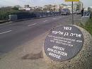 Ariyeh Ben Eliezer Bridge