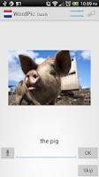 Screenshot of Learn Dutch with WordPic