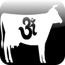 OM Cow Productions