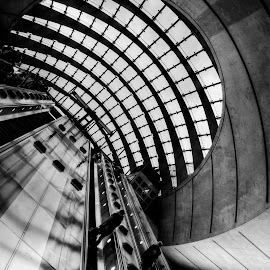 canary wharf station by Kevin Towler - Buildings & Architecture Other Interior ( london, tube, station, black and white, steps, underground,  )