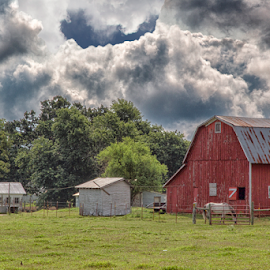 Little Red Barn by Michael Buffington - Landscapes Prairies, Meadows & Fields ( field, pasture, sky, red barn, red, barn, meadow, landscape, arkansas )