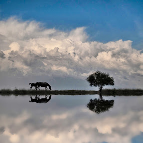One very ordinary day by Boricic Goran - Landscapes Weather
