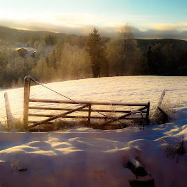 Gate by Jose Figueiredo - Landscapes Prairies, Meadows & Fields ( snow, landscape, norway )