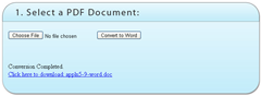 PDF document to word conversion screenshot