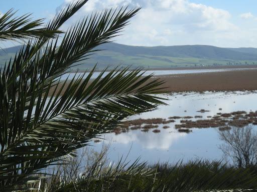 بحيرة محمية اشكل بتونس,الطبيعه تونس,السياحه DSCN0434.JPG?imgmax=