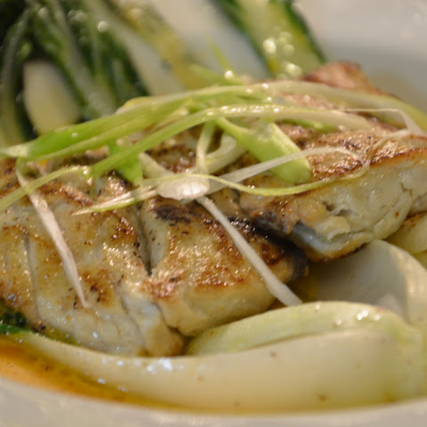 Braised Bluefish with Baby Bok Choy in Saffron Jus