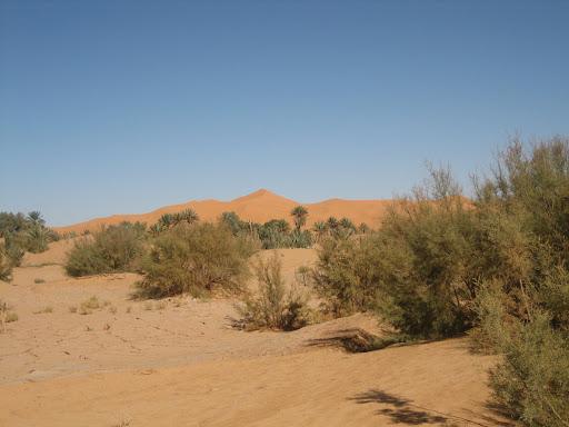 صور بني عباس بولاية بشار جنوب الجزائر Photo%20desert%20tunisie%20071